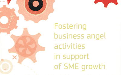 Guidebook: Fostering Business Angel Activities in Support of SME Growth